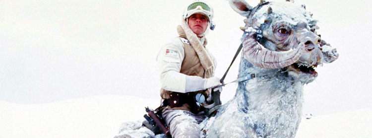 Tauntaun Star Wars