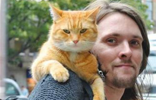 James Bowen i el seu gat Bob