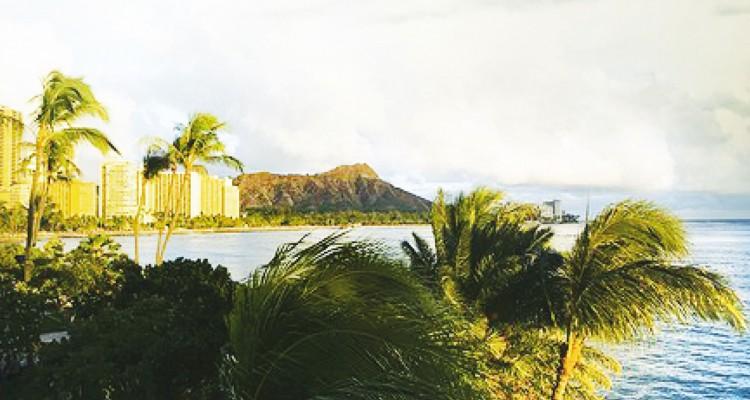 """""""Res no és perfecte a Hawaii"""" - Màrius Serra Proa"""