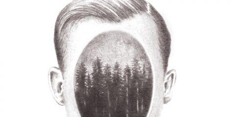 Los bosques imantados Juan Vico Seix Barral